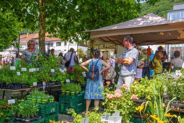 Kräutermarkt und Klosterfest 2018