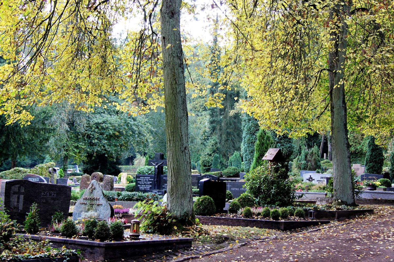 Geführter Rundgang über den Friedhof Neue Welt